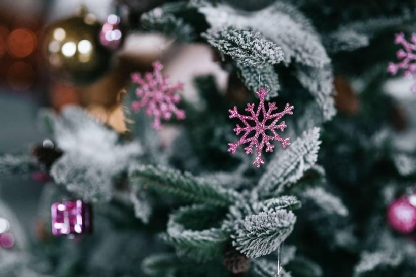 圣诞节短信祝福语